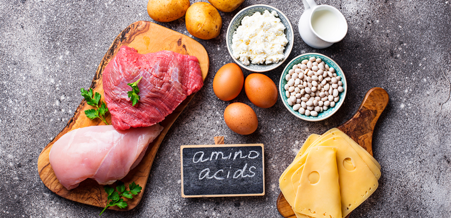 foods containing amino acids