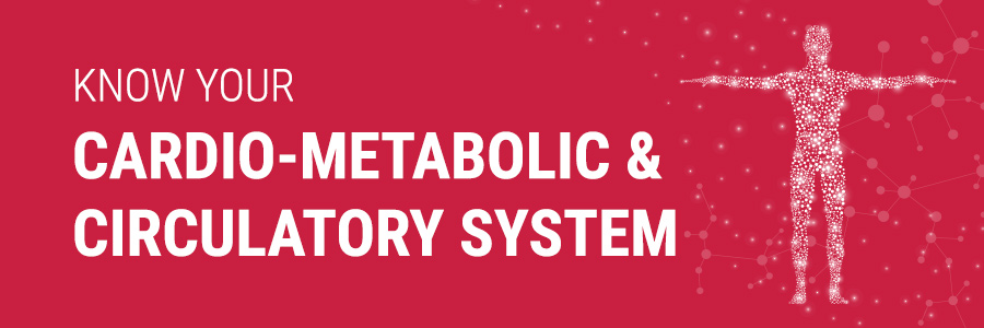 Cardio-Metabolic & Circulatory System